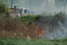 Click for full size image